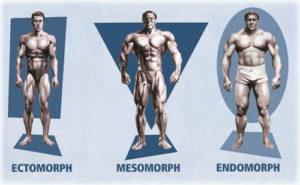 allenamento soggetti endomorfo, esoformo, ectomorfo