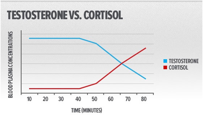 cortisolo e testosterone
